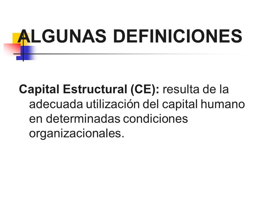 ALGUNAS DEFINICIONES Capital Estructural (CE): resulta de la adecuada utilización del capital humano en determinadas condiciones organizacionales.