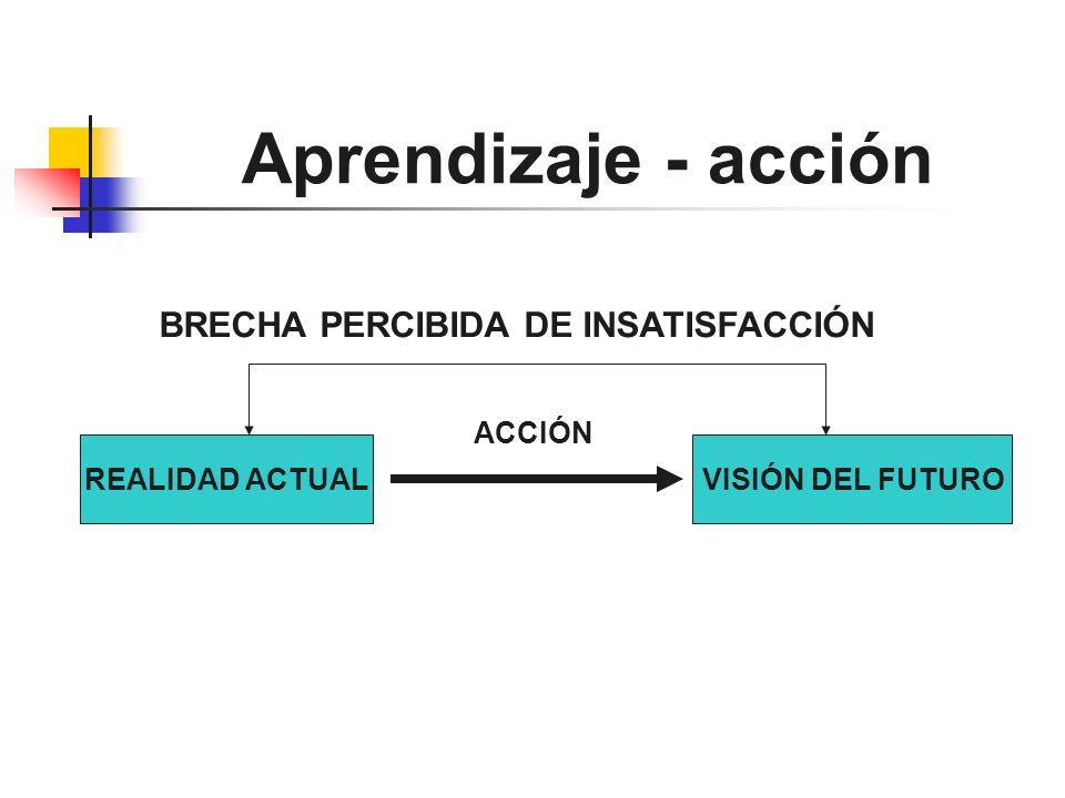 Aprendizaje - acción REALIDAD ACTUALVISIÓN DEL FUTURO BRECHA PERCIBIDA DE INSATISFACCIÓN ACCIÓN
