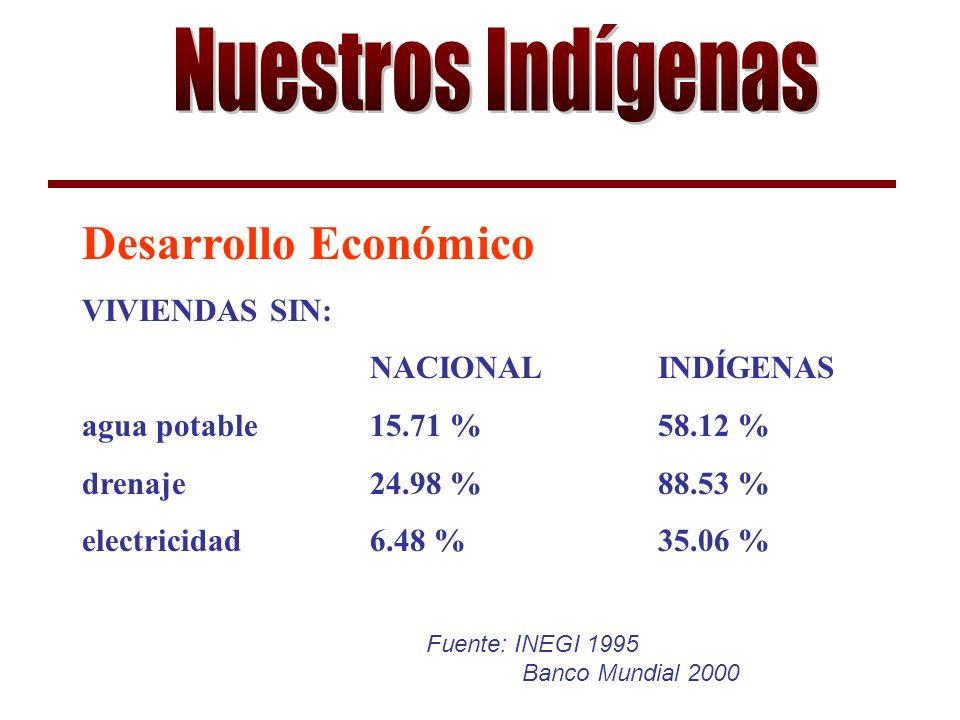 Fuente: INEGI 1995 Banco Mundial 2000 Desarrollo Económico VIVIENDAS SIN: NACIONAL INDÍGENAS agua potable15.71 %58.12 % drenaje24.98 %88.53 % electricidad 6.48 % 35.06 %