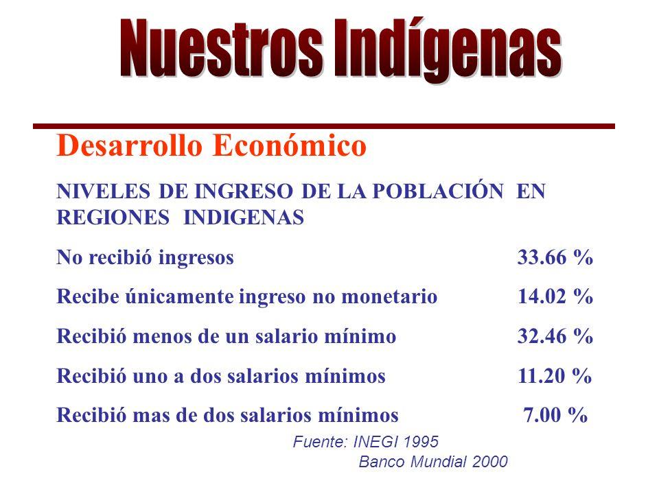 Fuente: INEGI 1995 Banco Mundial 2000 Desarrollo Económico NIVELES DE INGRESO DE LA POBLACIÓN EN REGIONES INDIGENAS No recibió ingresos33.66 % Recibe únicamente ingreso no monetario14.02 % Recibió menos de un salario mínimo32.46 % Recibió uno a dos salarios mínimos11.20 % Recibió mas de dos salarios mínimos 7.00 %