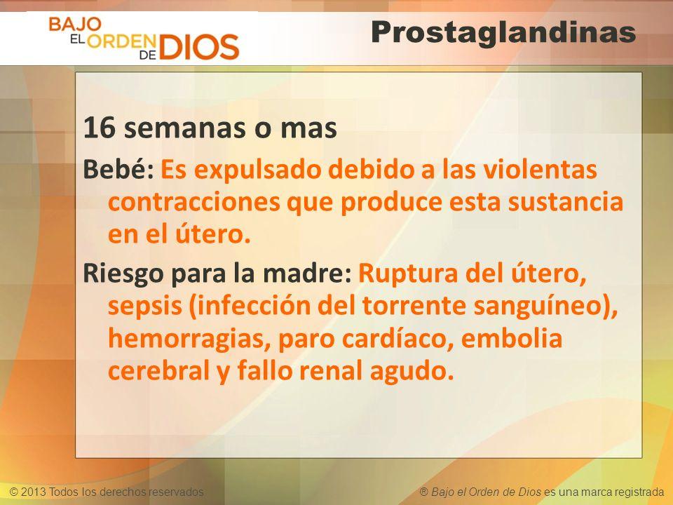© 2013 Todos los derechos reservados ® Bajo el Orden de Dios es una marca registrada Prostaglandinas 16 semanas o mas Bebé: Es expulsado debido a las