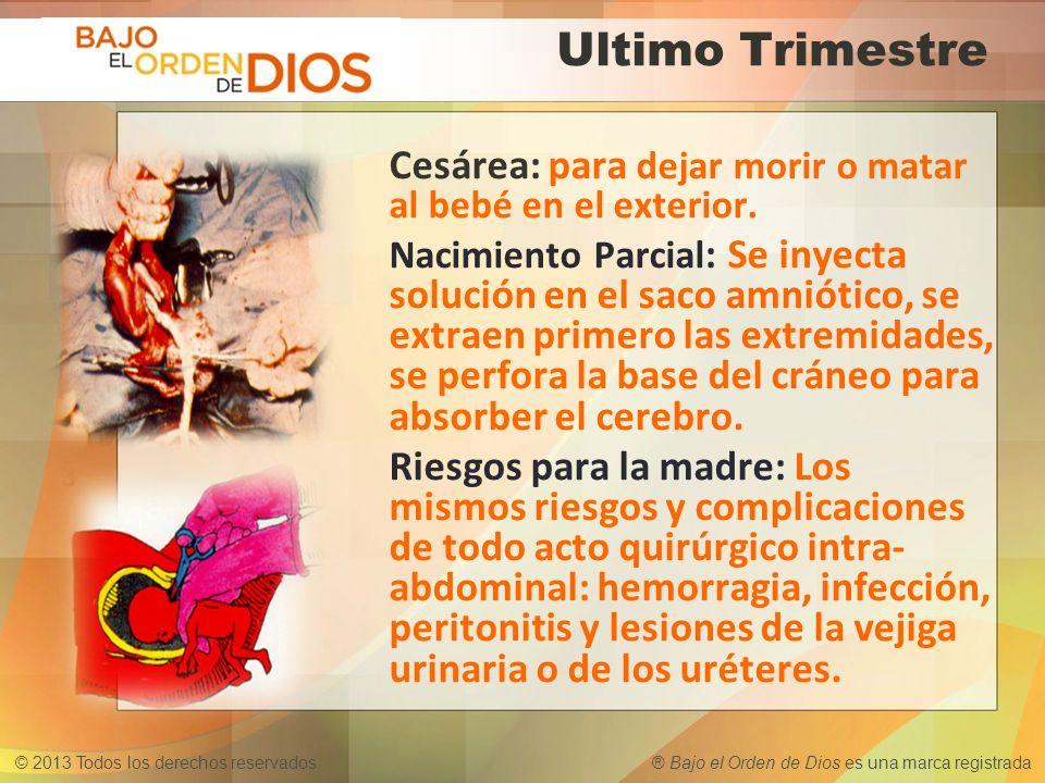 © 2013 Todos los derechos reservados ® Bajo el Orden de Dios es una marca registrada Ultimo Trimestre Cesárea: para dejar morir o matar al bebé en el