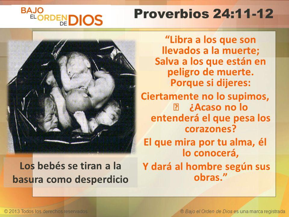 © 2013 Todos los derechos reservados ® Bajo el Orden de Dios es una marca registrada Proverbios 24:11-12 Libra a los que son llevados a la muerte; Sal