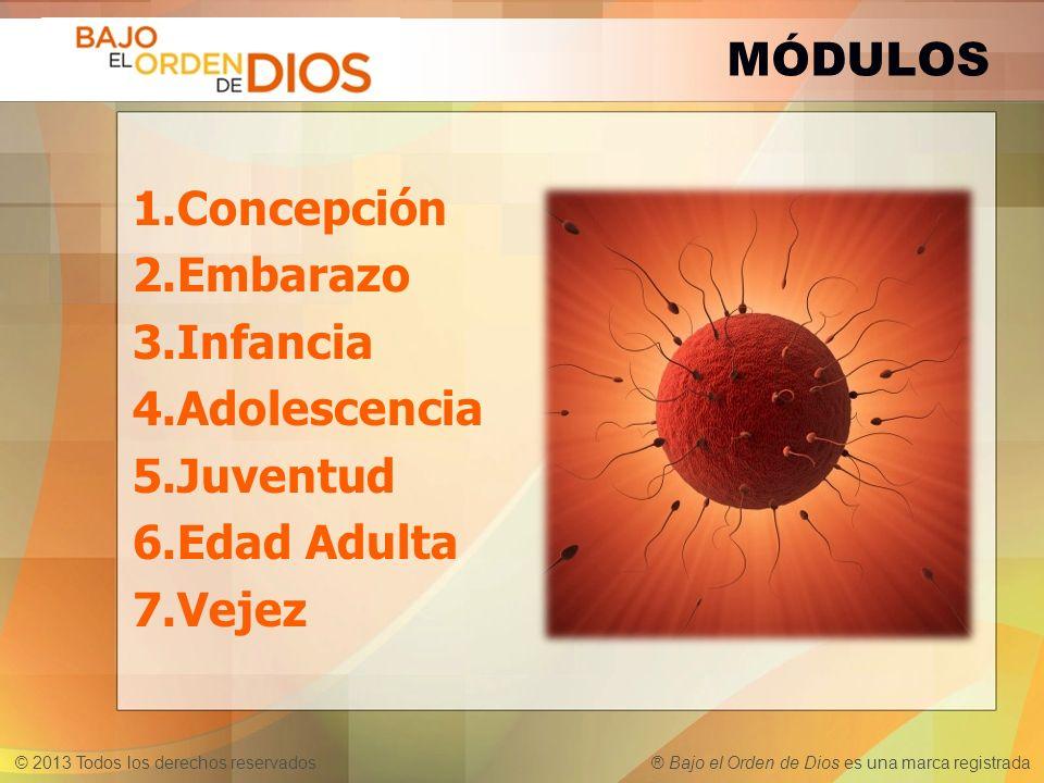 © 2013 Todos los derechos reservados ® Bajo el Orden de Dios es una marca registrada 1.Concepción 2.Embarazo 3.Infancia 4.Adolescencia 5.Juventud 6.Ed