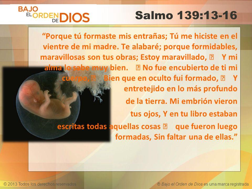 © 2013 Todos los derechos reservados ® Bajo el Orden de Dios es una marca registrada Salmo 139:13-16 Porque tú formaste mis entrañas; Tú me hiciste en