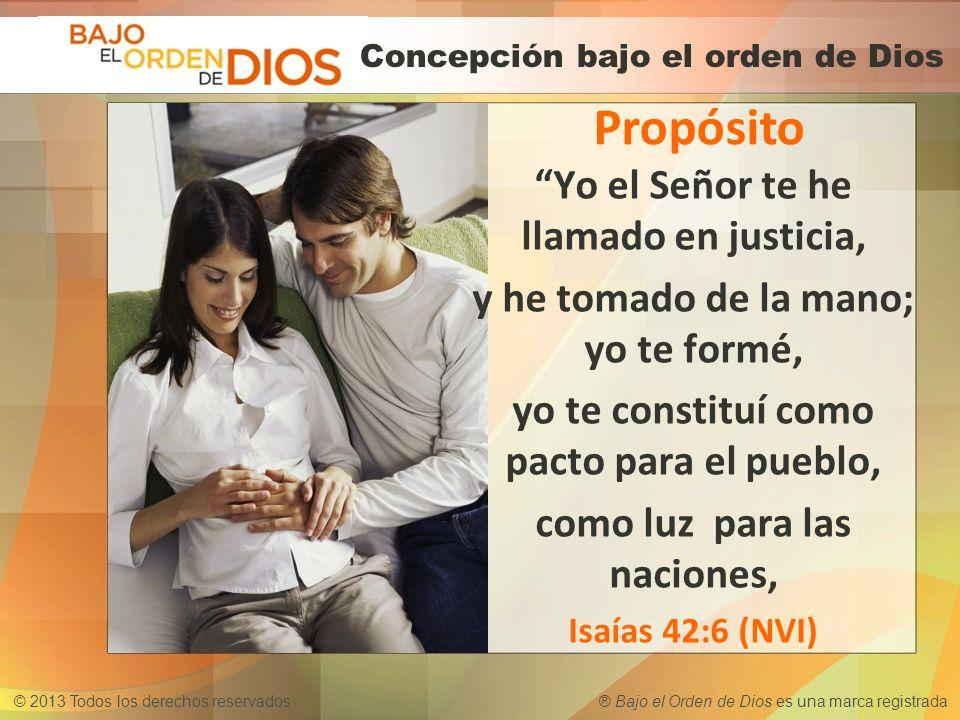 © 2013 Todos los derechos reservados ® Bajo el Orden de Dios es una marca registrada Concepción bajo el orden de Dios Propósito Yo el Señor te he llam
