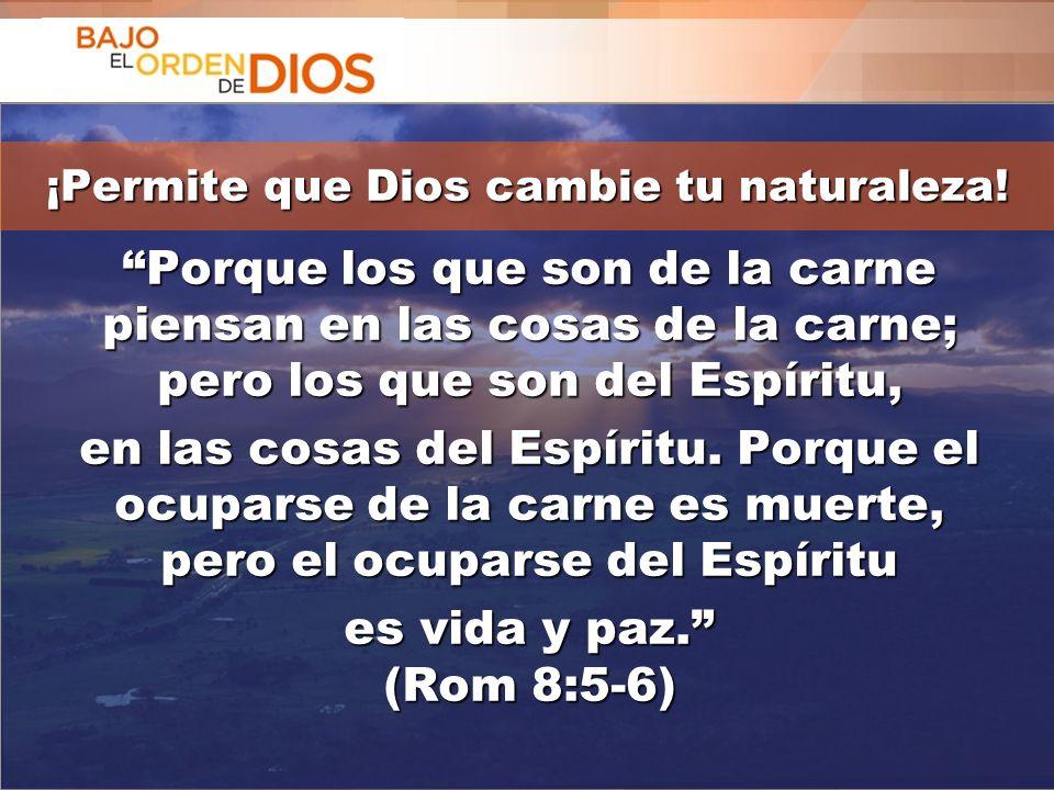 © 2013 Todos los derechos reservados ® Bajo el Orden de Dios es una marca registrada Porque los que son de la carne piensan en las cosas de la carne;