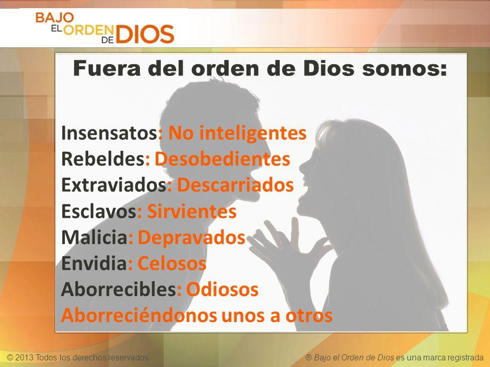 © 2013 Todos los derechos reservados ® Bajo el Orden de Dios es una marca registrada Insensatos: No inteligentes Rebeldes: Desobedientes Extraviados: