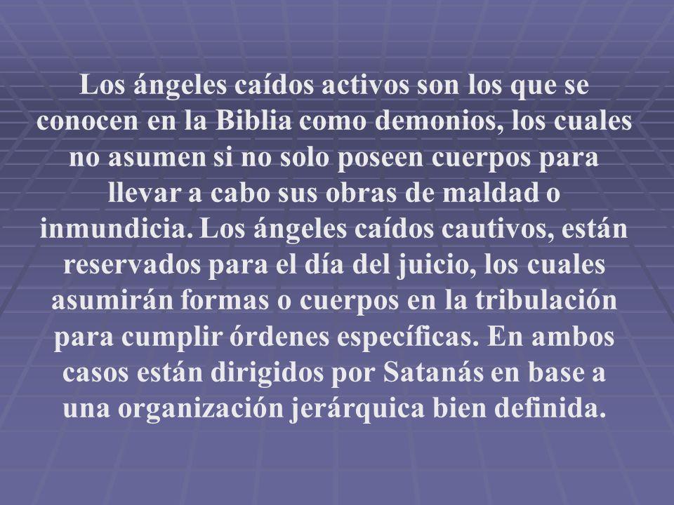 Los ángeles caídos activos son los que se conocen en la Biblia como demonios, los cuales no asumen si no solo poseen cuerpos para llevar a cabo sus ob