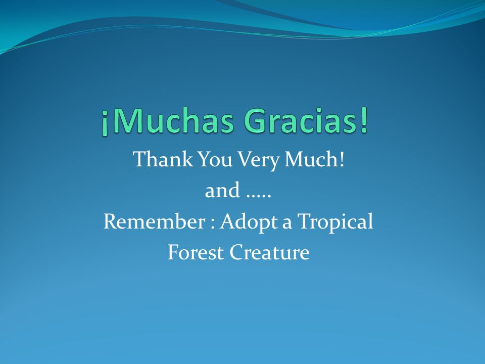 Thank You Very Much! and ….. Remember : Adopt a Tropical Forest Creature
