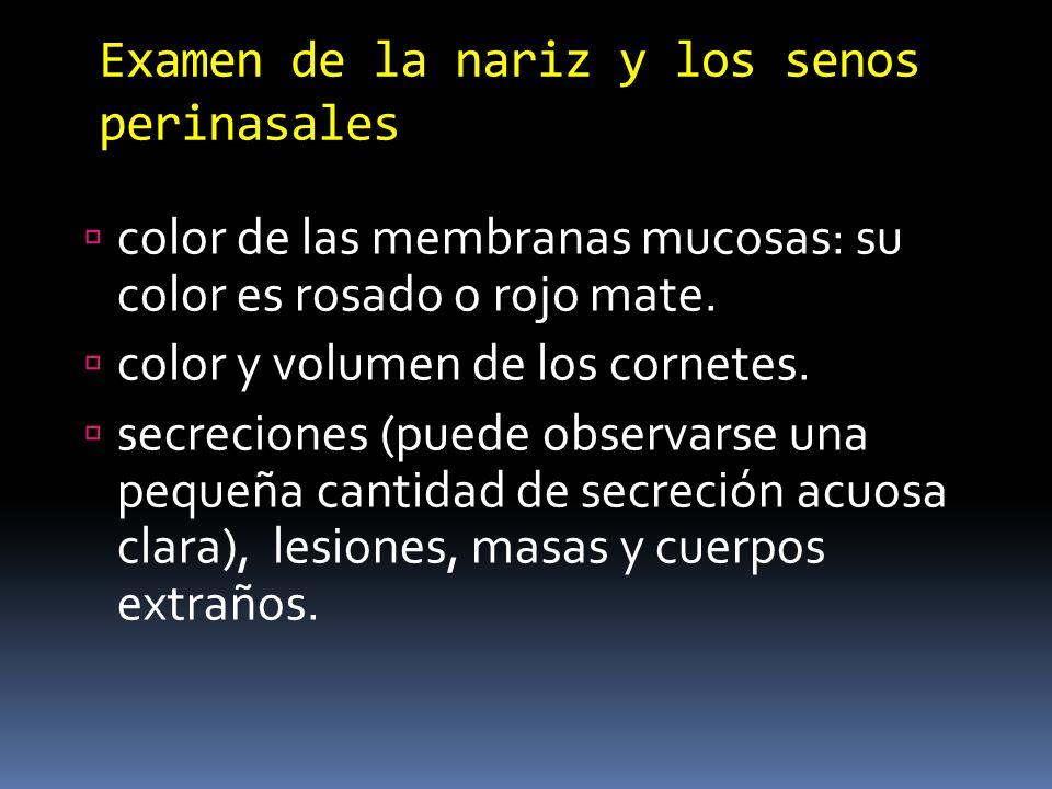Examen de la nariz y los senos perinasales color de las membranas mucosas: su color es rosado o rojo mate. color y volumen de los cornetes. secrecione