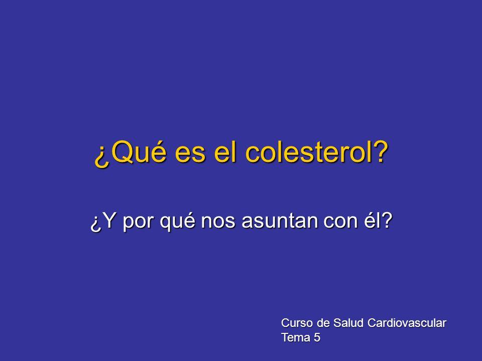 ¿Qué es el colesterol? ¿Y por qué nos asuntan con él? Curso de Salud Cardiovascular Tema 5