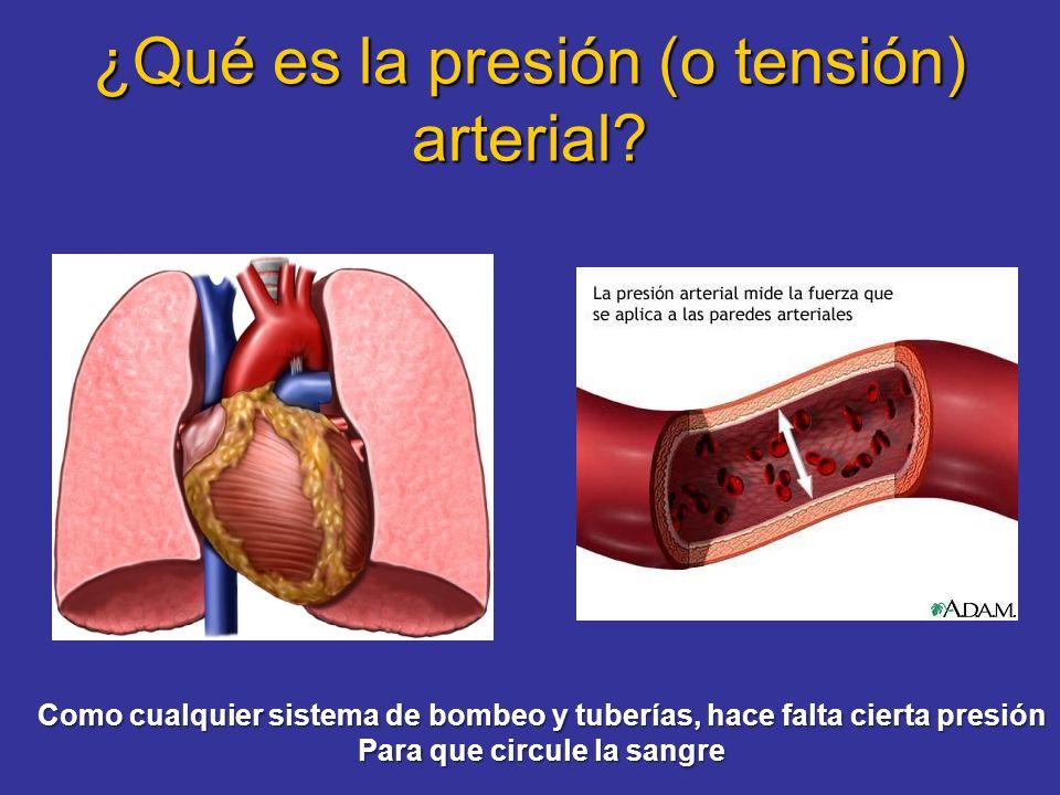 Tensión arterial máxima (sistólica): Mientras el corazón bombea sangre Tensión arterial mínima (diastólica): Mientras el corazón se está llenando y no bombea 120 mm Hg 120 mm Hg TA = --------------------- 80 mm Hg 80 mm Hg Máxima Mínima