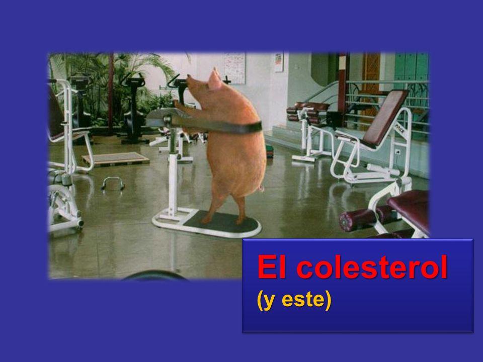 El colesterol (y este)