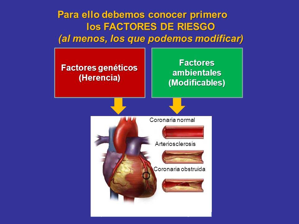 Para ello debemos conocer primero los FACTORES DE RIESGO (al menos, los que podemos modificar) Coronaria normal Arteriosclerosis Coronaria obstruida F