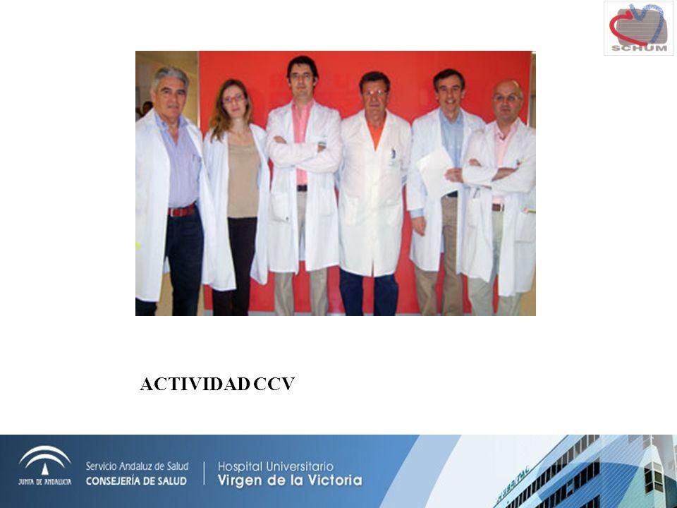 ACTIVIDAD CCV