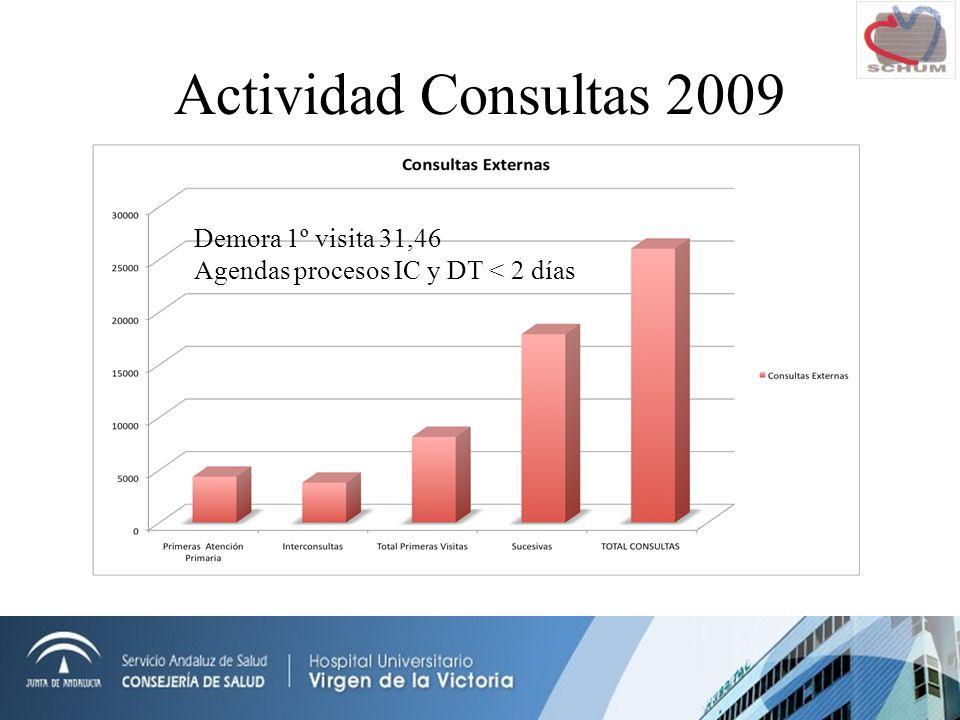 Actividad Consultas 2009 Demora 1º visita 31,46 Agendas procesos IC y DT < 2 días