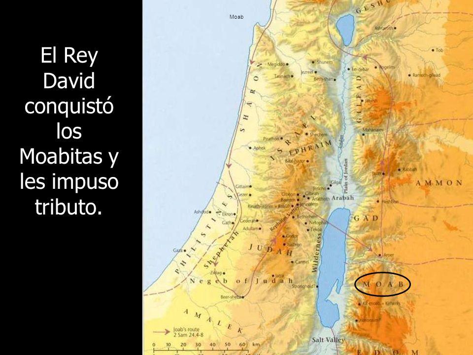 Moab El Rey David conquistó los Moabitas y les impuso tributo.