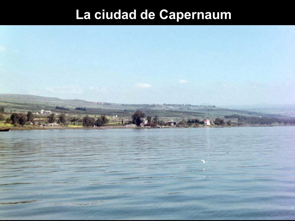 La ciudad de Capernaum