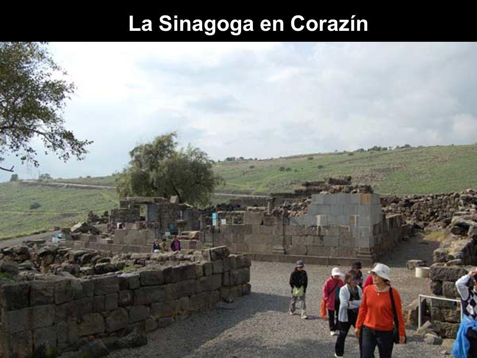 La Sinagoga en Corazín