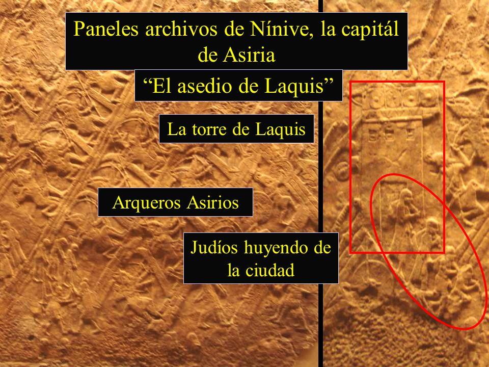 Paneles archivos de Nínive, la capitál de Asiria El asedio de Laquis La torre de Laquis Arqueros Asirios Judíos huyendo de la ciudad