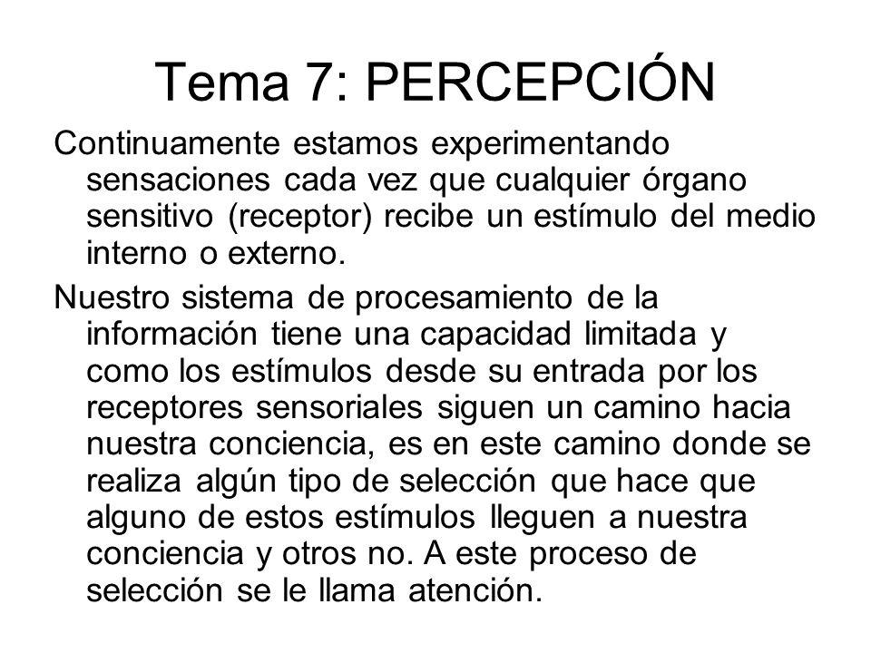 Tema 7: PERCEPCIÓN Continuamente estamos experimentando sensaciones cada vez que cualquier órgano sensitivo (receptor) recibe un estímulo del medio in