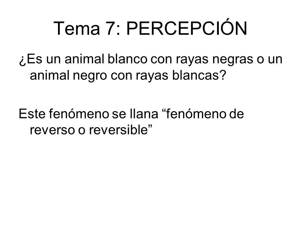 ¿Es un animal blanco con rayas negras o un animal negro con rayas blancas? Este fenómeno se llana fenómeno de reverso o reversible