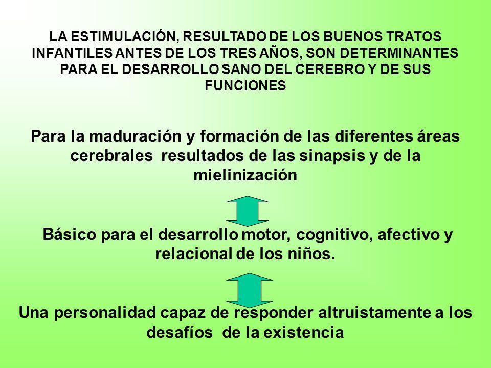 Las fuentes de las dinámicas de cuidado y de buenos tratos Resiliencia Primaria 1.Fuentes biológicas –Hormonas : oxitocina, vasopresina y los peptidos opiodes endógenos –Estructura cerebral dependiente del entorno 2.