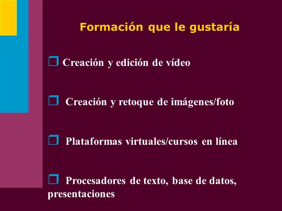 Formación que le gustaría Creación y edición de vídeo Creación y retoque de imágenes/foto Plataformas virtuales/cursos en línea Procesadores de texto,