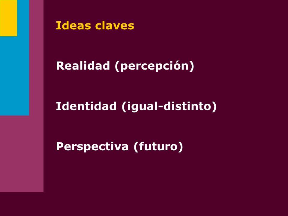 Ideas claves Realidad (percepción) Identidad (igual-distinto) Perspectiva (futuro)
