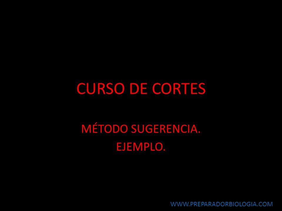 CURSO DE CORTES MÉTODO SUGERENCIA. EJEMPLO. WWW.PREPARADORBIOLOGIA.COM