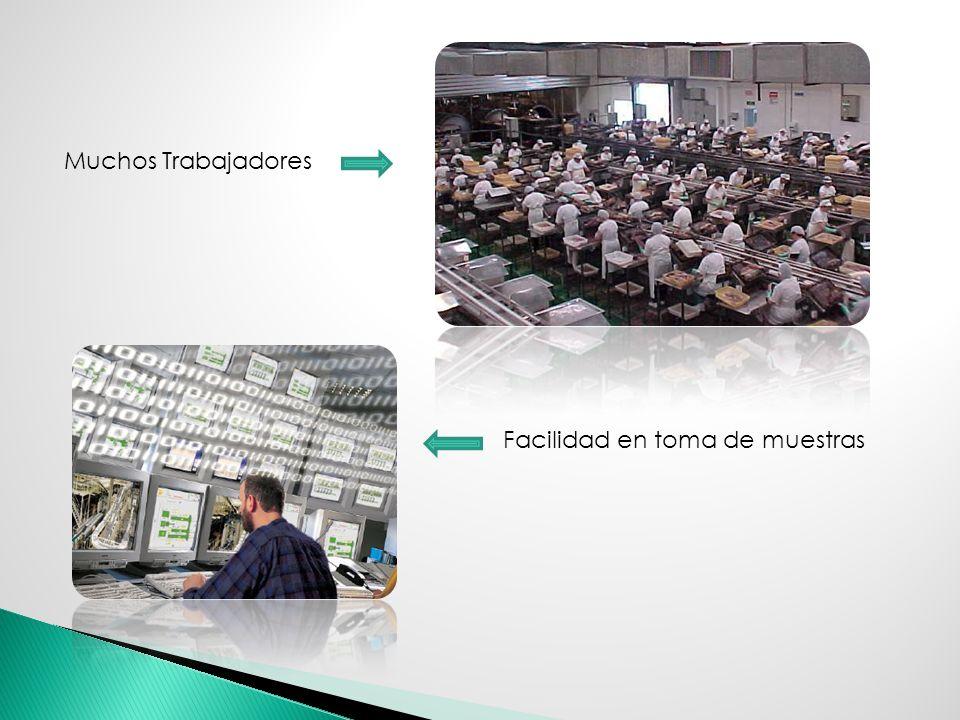 Muchos Trabajadores Facilidad en toma de muestras