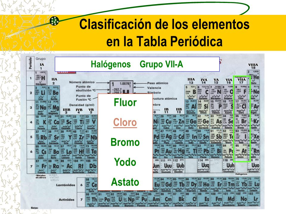 Clasificación de los elementos en la Tabla Periódica Halógenos Grupo VII-A Fluor Cloro Bromo Yodo Astato