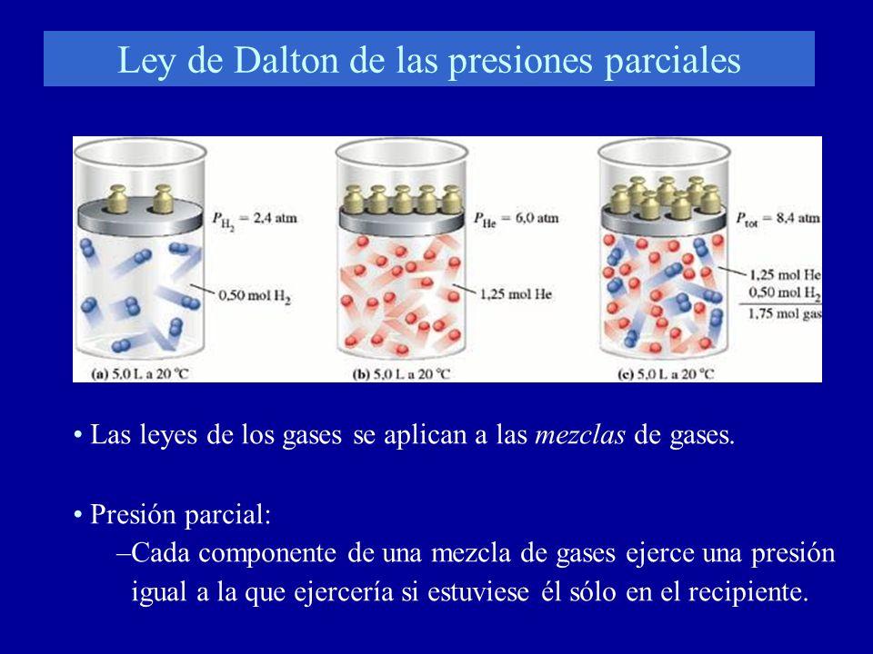 Ley de Dalton de las presiones parciales Las leyes de los gases se aplican a las mezclas de gases. Presión parcial: –Cada componente de una mezcla de