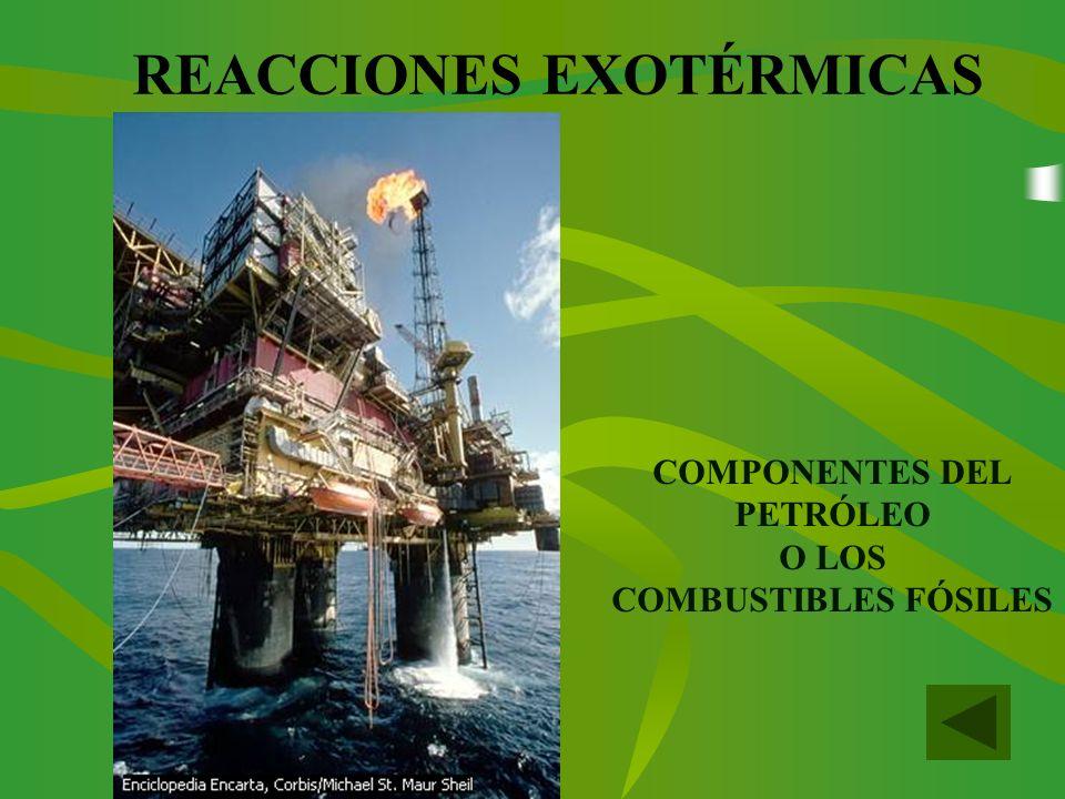 REACCIONES EXOTÉRMICAS COMPONENTES DEL PETRÓLEO O LOS COMBUSTIBLES FÓSILES