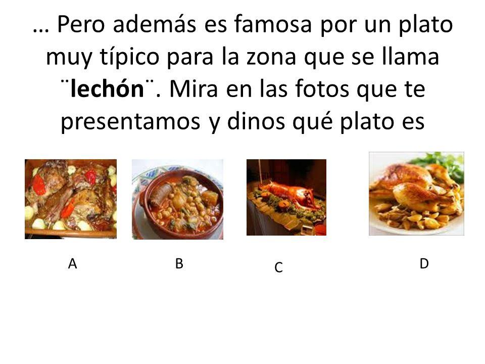 … Pero además es famosa por un plato muy típico para la zona que se llama ¨lechón¨. Mira en las fotos que te presentamos y dinos qué plato es AB C D