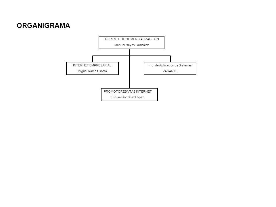 ORGANIGRAMA GERENTE DE COMERCIALIZACIOJN Manuel Reyes González INTERNET EMPRESARIAL Miguel Ramos Costa Ing. de Aplicacion de Sistemas VACANTE PROMOTOR
