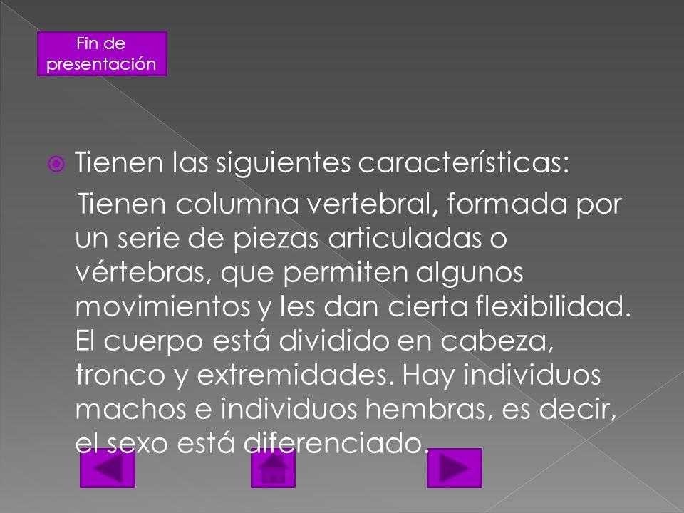 Fin de presentación Tienen las siguientes características: Tienen columna vertebral, formada por un serie de piezas articuladas o vértebras, que permi