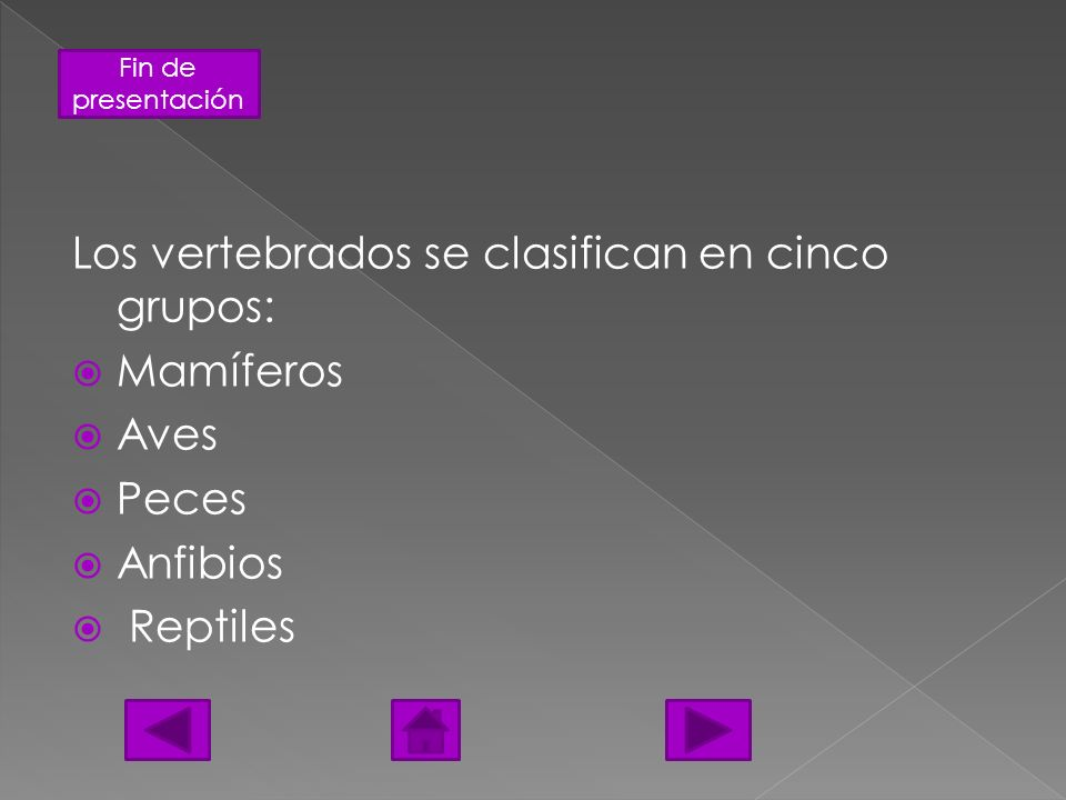 Fin de presentación Los vertebrados se clasifican en cinco grupos: Mamíferos Aves Peces Anfibios Reptiles