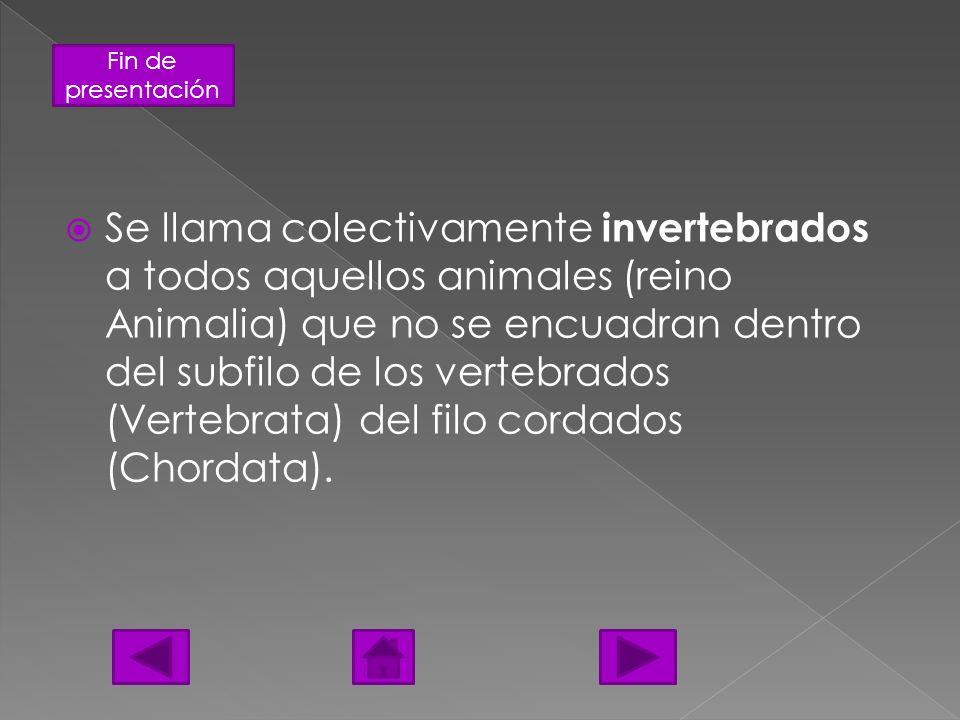 Fin de presentación Los invertebrados se clasifican en varios grupos: Los artrópodos Los moluscos Los gusanos Los equinodermos Las medusas Las esponjas