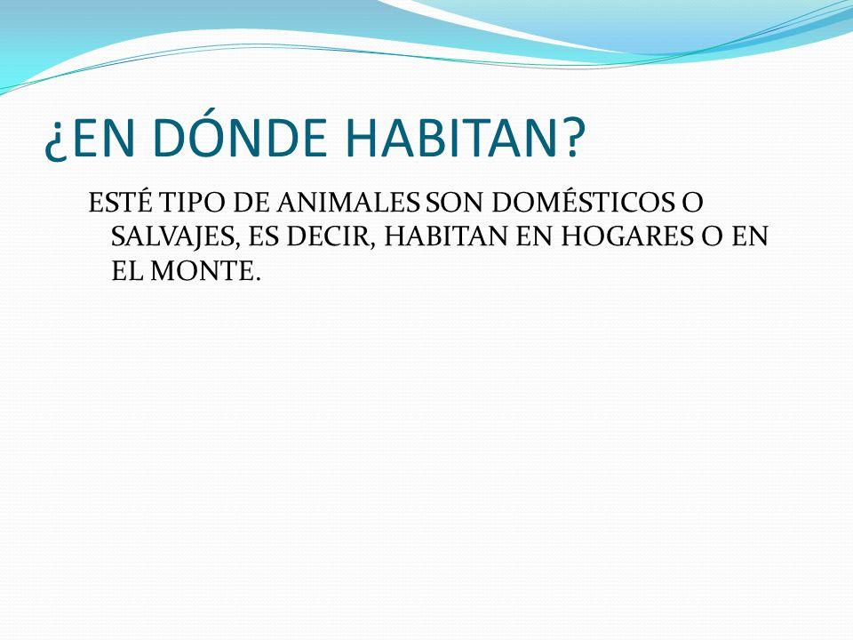 ¿EN DÓNDE HABITAN? ESTÉ TIPO DE ANIMALES SON DOMÉSTICOS O SALVAJES, ES DECIR, HABITAN EN HOGARES O EN EL MONTE.
