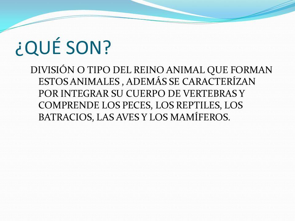 ¿CUÁLES SON? COMO POR EJEMPLO: BALLENA, EL PERRO, EL CABALLO Y EL BURRO, LA VACA, ETC.