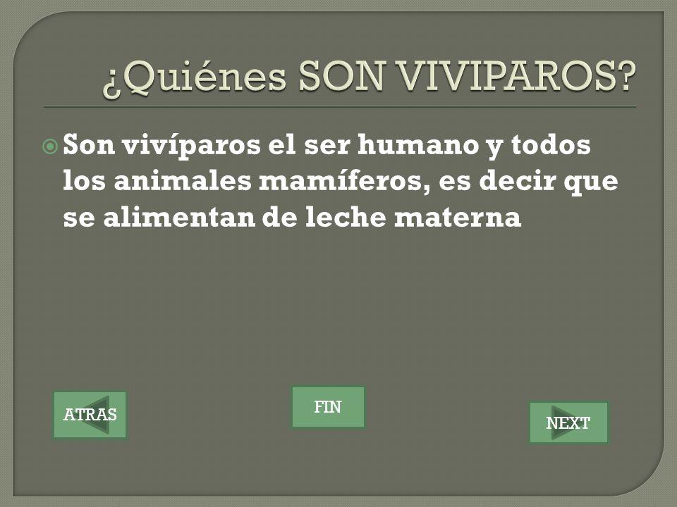 ATRAS NEXT FIN Son vivíparos el ser humano y todos los animales mamíferos, es decir que se alimentan de leche materna