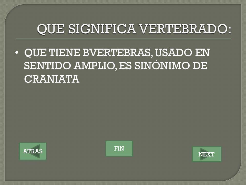 ATRAS NEXT FIN QUE TIENE BVERTEBRAS, USADO EN SENTIDO AMPLIO, ES SINÓNIMO DE CRANIATA
