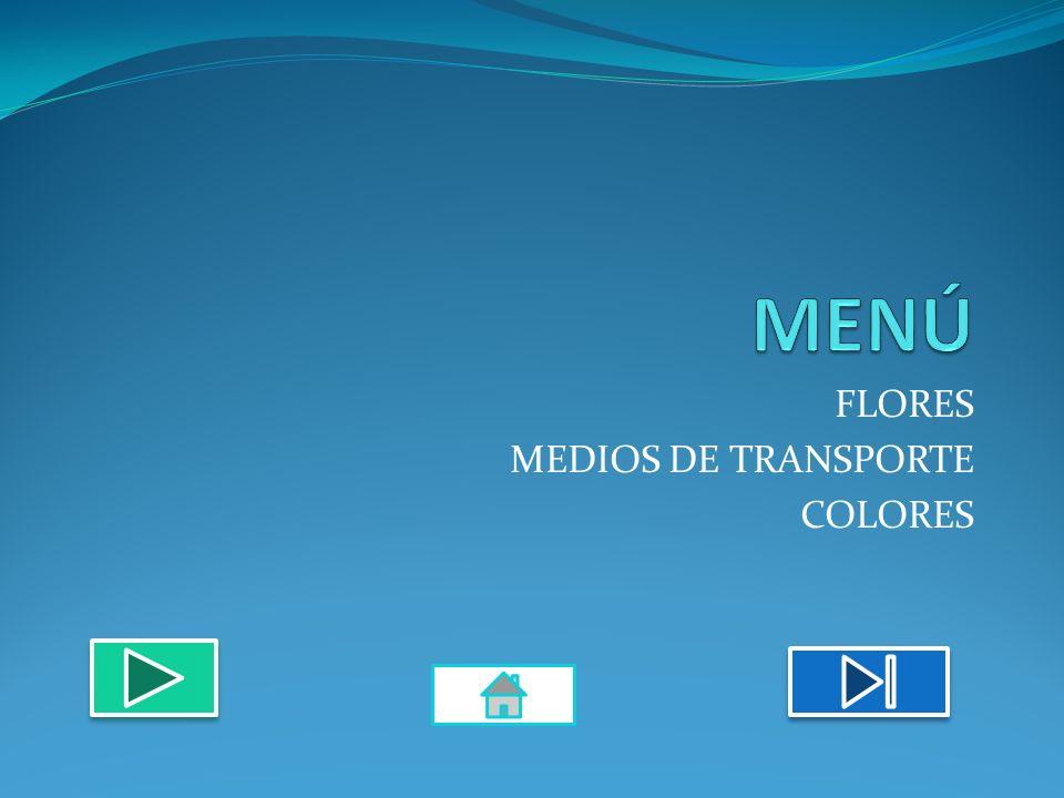 FLORES MEDIOS DE TRANSPORTE COLORES