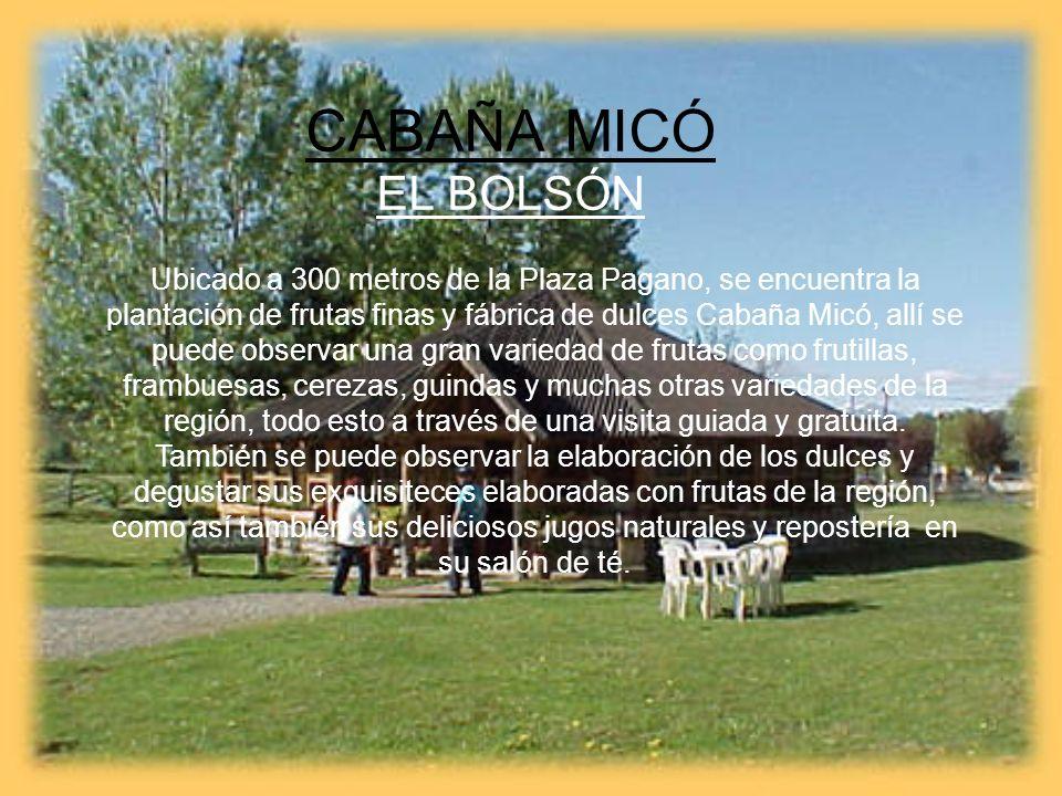 CABAÑA MICÓ EL BOLSÓN Ubicado a 300 metros de la Plaza Pagano, se encuentra la plantación de frutas finas y fábrica de dulces Cabaña Micó, allí se pue