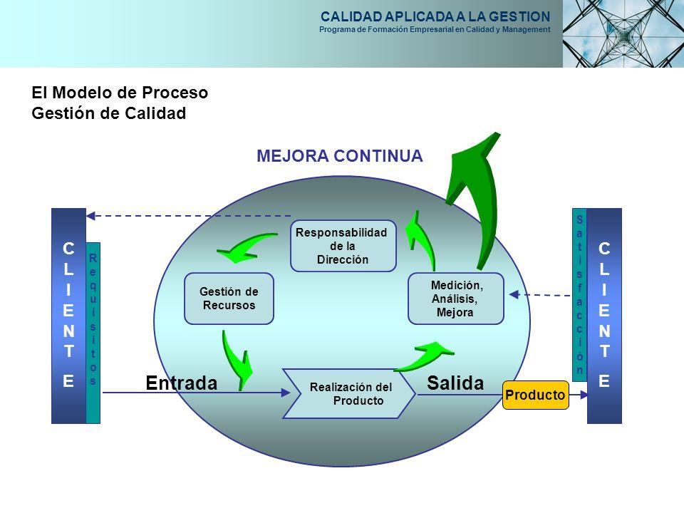 CALIDAD APLICADA A LA GESTION Programa de Formación Empresarial en Calidad y Management El Modelo de Proceso Gestión de Calidad Gestión de Recursos Re