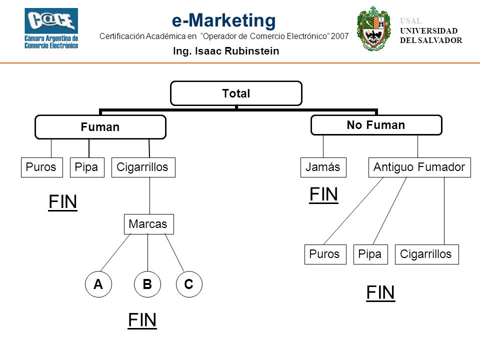 Ing. Isaac Rubinstein USAL UNIVERSIDAD DEL SALVADOR e-Marketing Certificación Académica en Operador de Comercio Electrónico 2007 PurosCigarrillosPipa