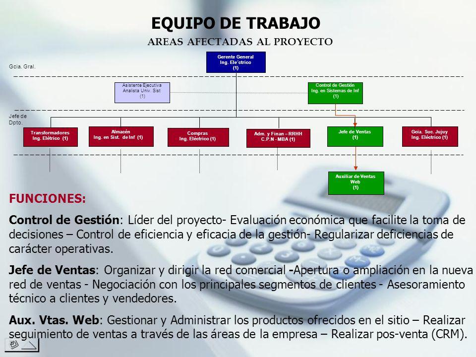 EQUIPO DE TRABAJO FUNCIONES: Control de Gestión: Líder del proyecto- Evaluación económica que facilite la toma de decisiones – Control de eficiencia y