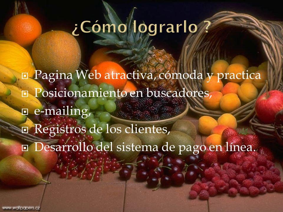 Pagina Web atractiva, cómoda y practica Posicionamiento en buscadores, e-mailing, Registros de los clientes, Desarrollo del sistema de pago en línea.
